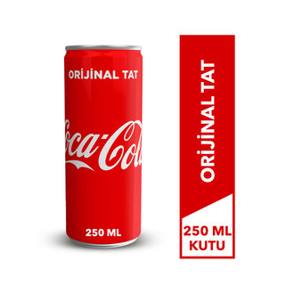 Coca-Cola 250 Ml Kutu